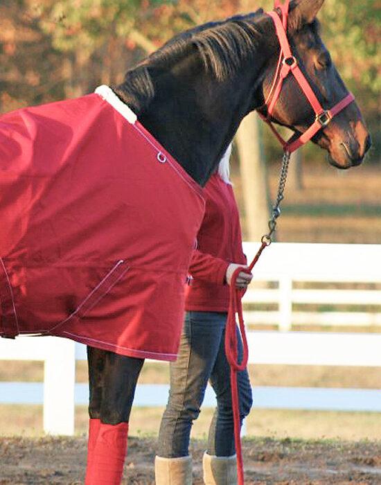 roberson-equestrian-facility-lease